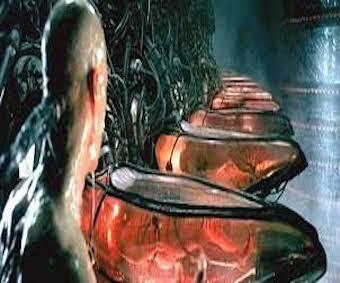 Matrix human batteries.jpeg