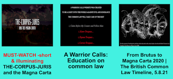 Action- common law.png
