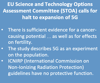 EU STOA Committee calls for halt to 5G expansion.png